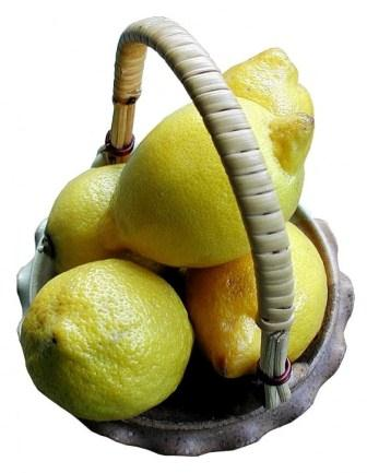 lemons can be eaten by people on a low fructose diet